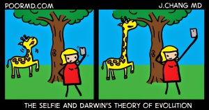 Evolution Selfie 4